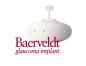 baerveldt_logo.png